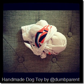 homemade dog toy