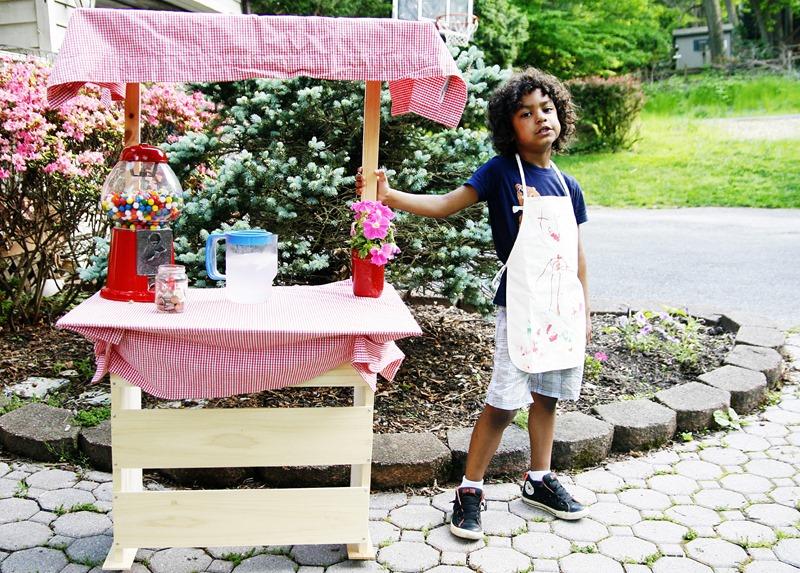kid lemonade stand