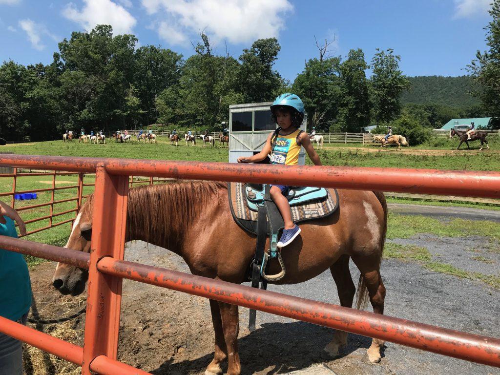 Massanutten Resport petting zoo pony rides