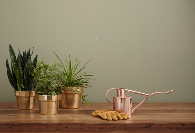 mother's day gift ideas - the sill